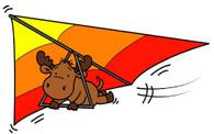 Hang Gliding Riley