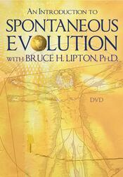 DVD: An Introduction to Spontaneous Evolution