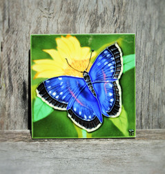 Butterfly & Yellow Flower Small Tile