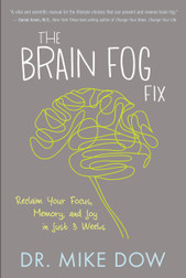 The Brain Fog
