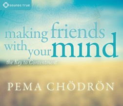 CD: Making Friends With Your Mind (4CD)