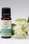 Lemon Myrtle Essential Oil