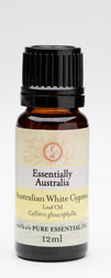 Australian White Cypress Essential oil (leaf oil)