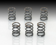 REINFORCED CLUTCH SPRING SET