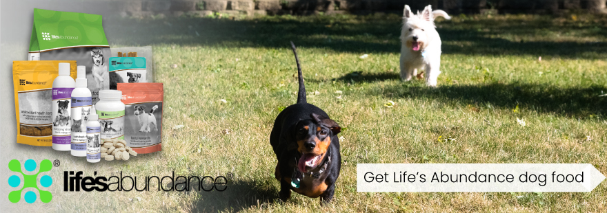 Happy dogs with Life's Abundance dog food