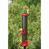 "Droll-Yankee-Bird-Lovers-15""-Red-Sunflower-Feeder"