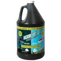 Eco-Labs-MLXSAG4-Liquid-Sludge-Away-Gallon
