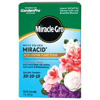 MIRACLE-GRO-Miracid-Acid-Loving-Plant-Food-1lb.-30-10-10