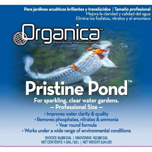 ORGANICA-Pristine-Pond-Microbial-Based-Pond-Clarifier-1-Gallon