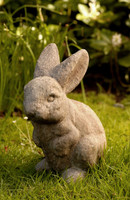 Campania Stone rabbit ears up statue.