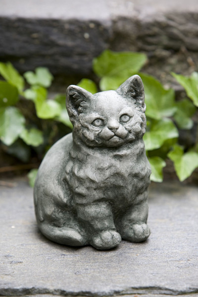 Campania Stone kitty.