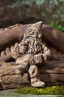 Campania Stone glimtwiss garden gnome statue.