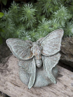 Campania Stone lunar moth statue.