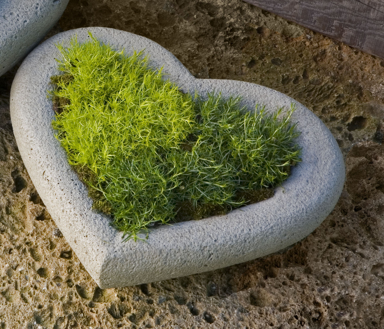 Campania Stone heart small planter.