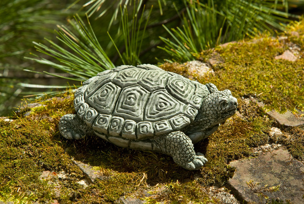 Campania Stone my pet turtle statue.