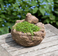 Campania Stone mini bird planter.