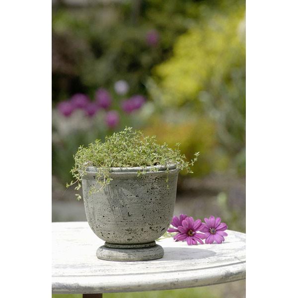 Campania Stone Arles planter
