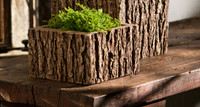 Campania Stone mini low reef square planter.