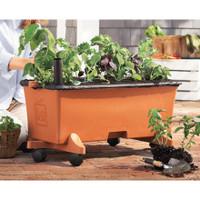 Earthbox Growing Kit