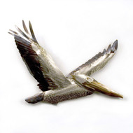Pelican Flying -Stainless Steel Wall Decor
