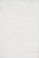 Loloi ORIAN SHAG OR-01 White