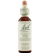 Vine - dominates everyone, bully