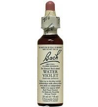Water Violet - proud, condescending