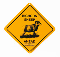 Grand Canyon Bighorn Sheep Crossing Sign