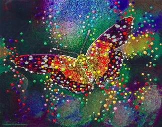 Butterfly Transformation - Release your inner beauty
