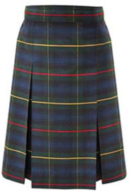 A+ Kick Pleat Skirt P55
