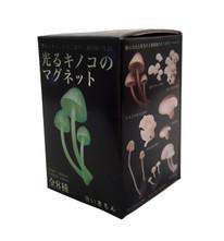 Mushroom Glow in the Dark Magnet Blind Box Figure