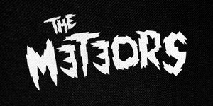 "The Meteors Logo 5x2.5"" Printed Patch"