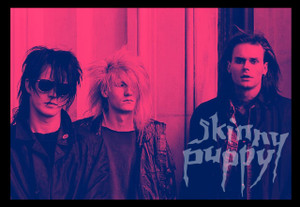 "Skinny Puppy Band 5.5x3.8"" Color Patch"