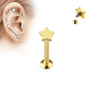 Star Top Internally Threaded 316L Surgical Steel Labret in Gold