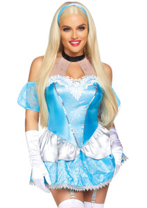 Sensual Cinderella Costume