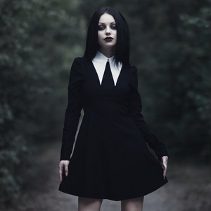Cathedral Long Sleeve Skater Dress