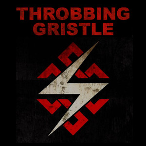 "Throbbing Gristle - 4x4"" Color Patch"
