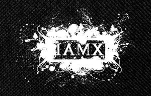 """IAMX 4x3"""" Printed Patch"""