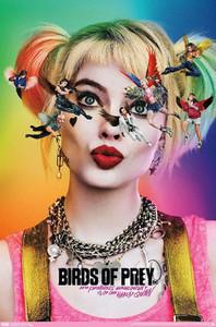 """Birds of Prey 24x36"""" Poster"""