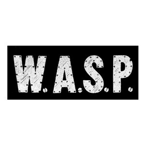 "W.A.S.P. Logo 6x3"" Printed Patch"