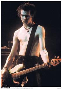 "Sex Pistols - Sid Vicious 24x36"" Poster"