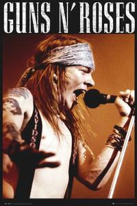 "Guns N Roses - Axel Rose Mic 24x36"" Poster"