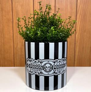 Striped Poison Ceramic Planter