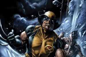 "Wolverine 12x18"" Poster"