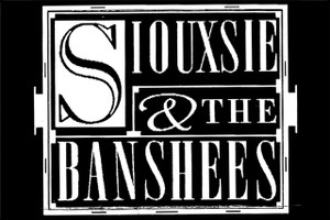 "Siouxsie and the Banshees 6x4"" Printed Sticker"