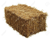 Certified Weed Free Rice Straw Bale