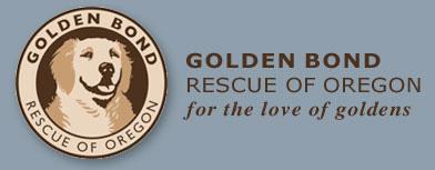 golden-retriever-rescue.jpg