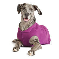 Gold Paw Series Stretch Fleece - Eggplant