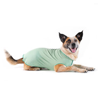 Gold Paw Series Sun Shield Tee - Pistachio Heather