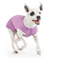 Gold Paw Series Sun Shield Tee - Violet Heather
